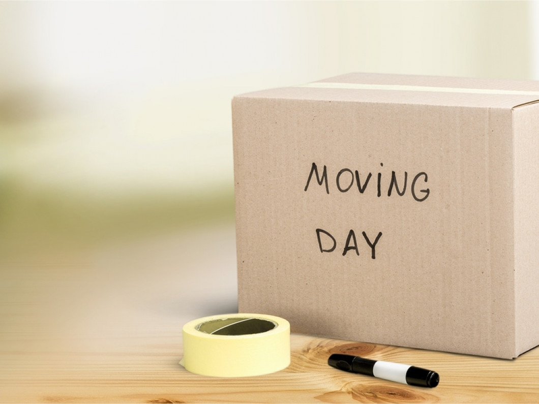 About Our Moving Company
